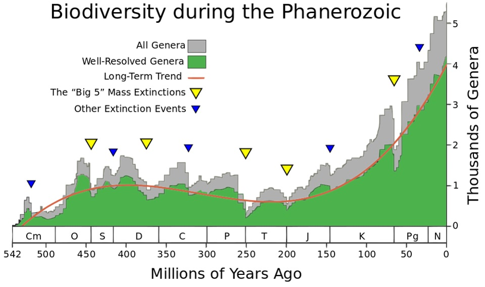 Are Mass Extinctions Periodic, And Are We Due For One? (Synopsis)